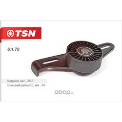 Ролик натяжителя приводного ремня (TSN) 6170