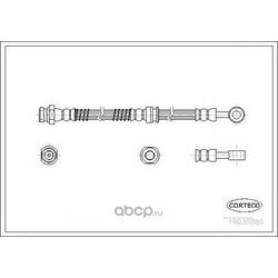 Тормозной шланг (Corteco) 19035880