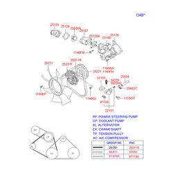 Натяжная планка, поликлиновой ремень (Hyundai-KIA) 252814A000