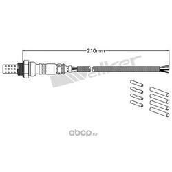 Лямбда-зонд (WALKER PRODUCTS) 25024400