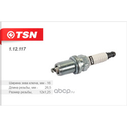 Свеча зажигания (Tsn) 112117