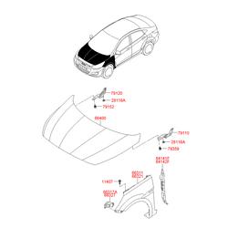 Панель крышки капота в сборе (Hyundai-KIA) 664001R100