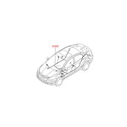 Комплект жгутов проводов задней правой двери в сборе (Hyundai-KIA) 915504L090