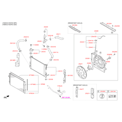 Крышка расширительного бачка системы охлаждения (Hyundai-KIA) 254411R000