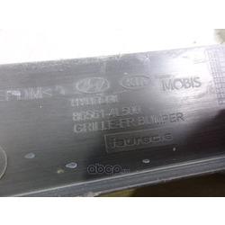 Решетка декоративная переднего бампера (Hyundai-KIA) 865614L500