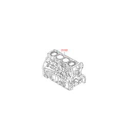 Блок цилиндров в сборе (Hyundai-KIA) 2Q01M25A01