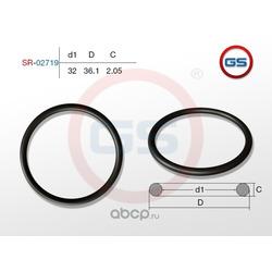 Резиновое кольцо (GS) SR02719