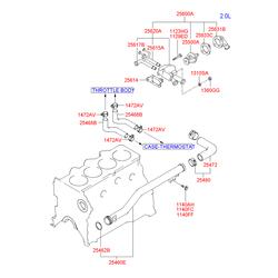 Шланг системы охлаждения (Hyundai-KIA) 2547223200