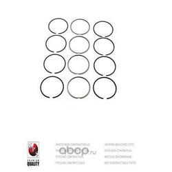 Комплект поршневых колец (Nippon pieces) H903I13