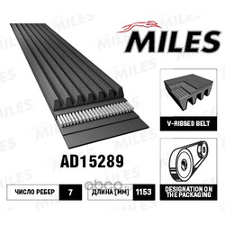 Ремень поликлиновой 7pk115 (Miles) AD15289