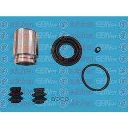 Поршень (Seinsa Autofren) D41602C