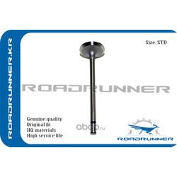 Клапан впускной двигателя (ROADRUNNER) RR2221127001