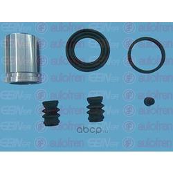 Ремкомплект, тормозной суппорт (Seinsa Autofren) D42029C