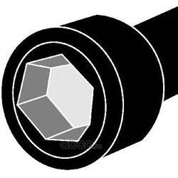 Комплект болтов головки цилидра (Corteco) 016071B