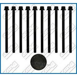 Комплект болтов головки цилидра (Ajusa) 81030200