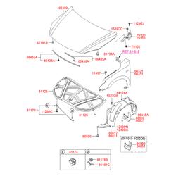 Подкрылок (Hyundai-KIA) 868322L000