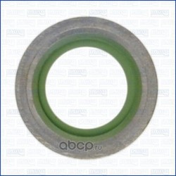 Уплотнительное кольцо, резьбовая пробка (Wilmink Group) WG1451938