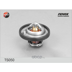Термостат (FENOX) TS050