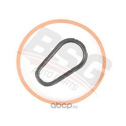 О-ринг комплект вакуумного насоса (BSG) BSG30235008