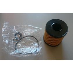 Фильтрующий элемент масляного фильтра с прокладкой (BM-Motorsport) FO0711