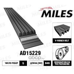 Ремень поликлиновой (Miles) AD15229