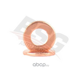 Кольцо уплотнительное форсунки (BSG) BSG30116104