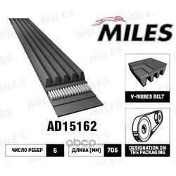 Ремень поликлиновой (Miles) AD15162