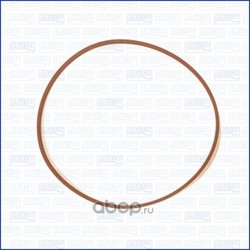 Прокладка коллектора впускного (Ajusa) 24028700