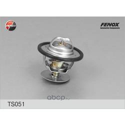 Термостат (FENOX) TS051