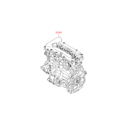 Двигатель (Hyundai-KIA) 211012BW02