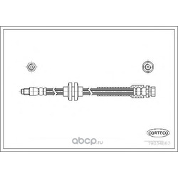 Тормозной шланг (Corteco) 19034667
