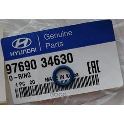 Уплотнительные кольца кондиционера (Hyundai-KIA) 9769034630