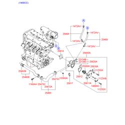 Патрубки водяного охлаждения термостата (Hyundai-KIA) 2546826101