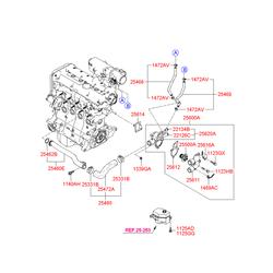 Термостат (Hyundai-KIA) 2550026100
