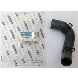Шланг термостата (Hyundai-KIA) 2548026001