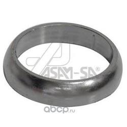 Уплотнительное кольцо (ASAM-SA) 30599