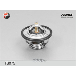 Термостат FENOX (FENOX) TS075