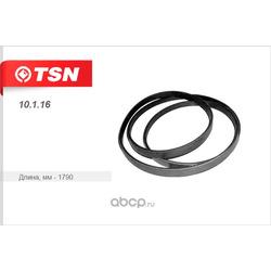 Ремень поликлиновой (TSN) 10116